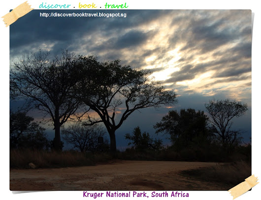 Kruger National Park Safari Day 3
