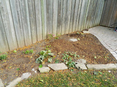 Fall Cleanup After in a Don Mills Toronto Backyard by Paul Jung Gardening Services--a Toronto Organic Gardening Services Company