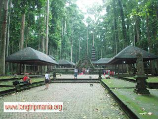 Tempat Wisata di Bali Yang Ada Kera