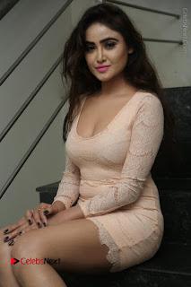 Telugu Actress Model Sony Charishta Stills in Short Dress at Rapture 2017 Grand Logo Launch  0099.JPG