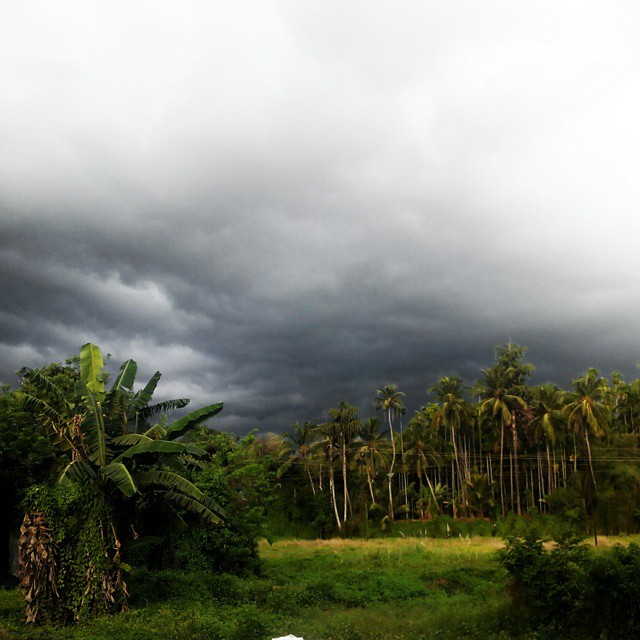 Monsoon Holidays In Kerala