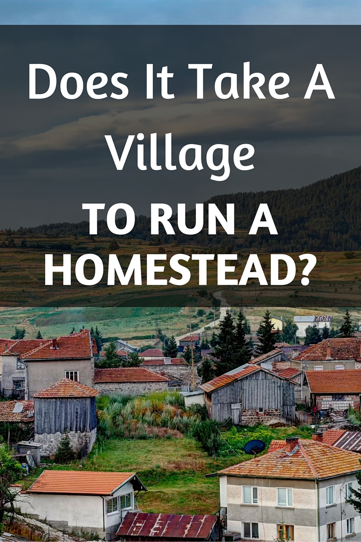 "Does it ""take a village"" to run a homestead, or should homesteaders be examples of preparedness?"