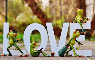 Love in white block letters and 4 frogs