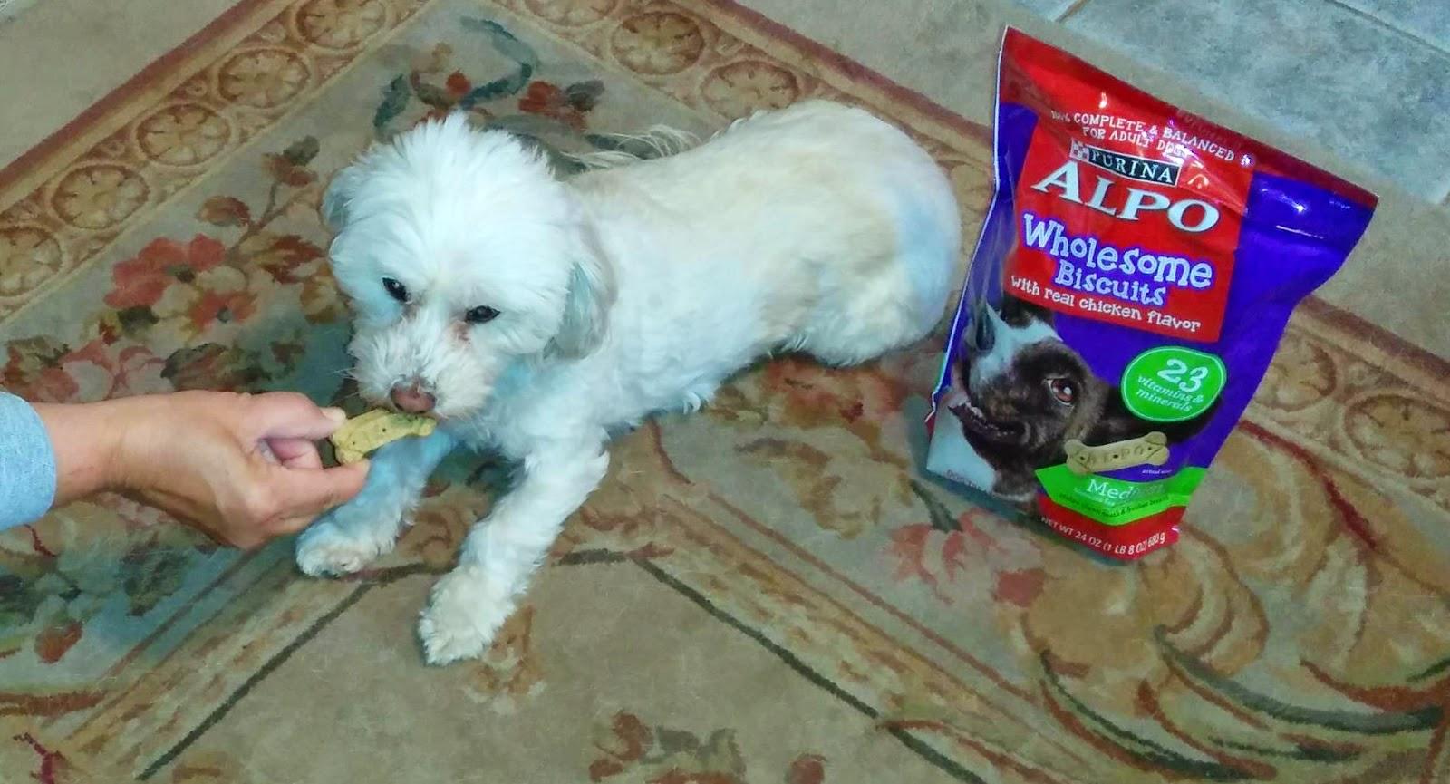 Alpo Dog Food Recall