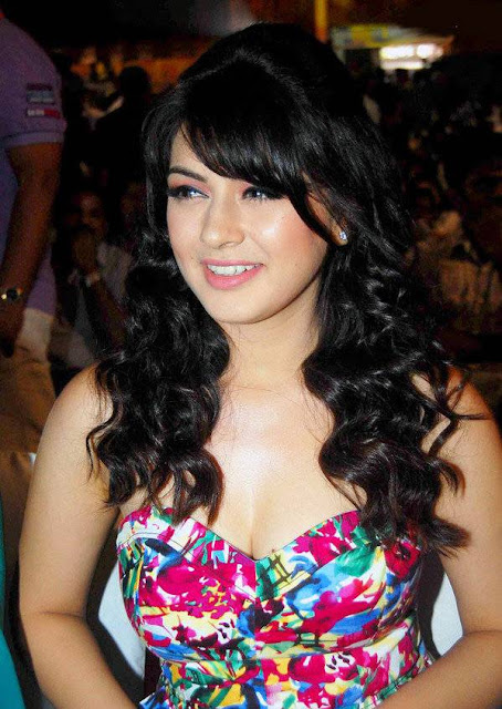 Hansika Spicy Stills 6