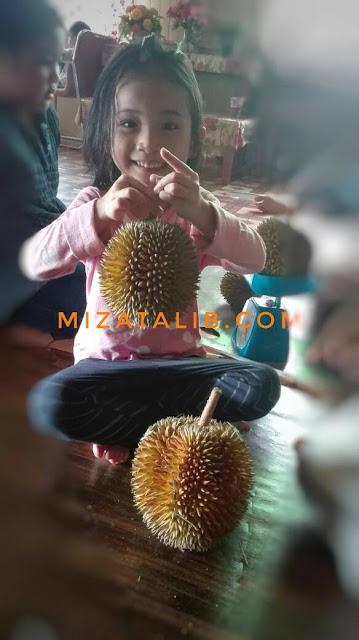 Dapat juga Merasa, durian kampung, raja buah, musim durian, durian sedap. tempoyak