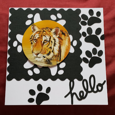 "Hello - Tiger on paw print background with paw prints 7"" square card -"