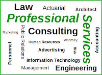 Graphic of professional services related words.
