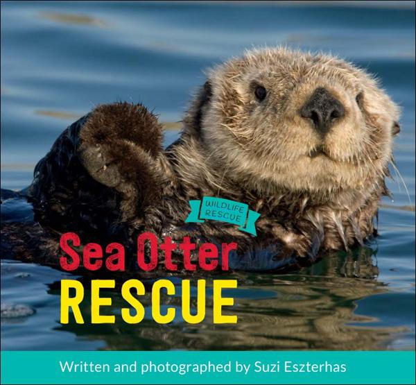 https://www.amazon.com/Sea-Otter-Rescue-Wildlife/dp/1771471751/ref=sr_1_1?ie=UTF8&qid=1475113831&sr=8-1&keywords=sea+otter+rescue+by+suzi+eszterhas