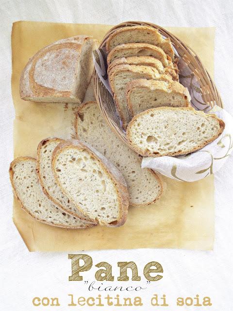 I biscotti della zia pane bianco a lievitazione naturale for Lecitina di soia in cucina