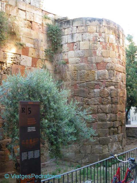 Barcelona romana, Barcino, arqueologia