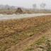 Effect van microplastics voor het eerst op ecosysteem op land aangetoond