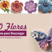 200 Flores Crochet