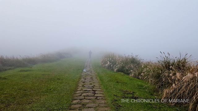 dramatic fog