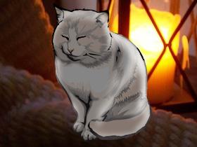 救出猫(素材使用)