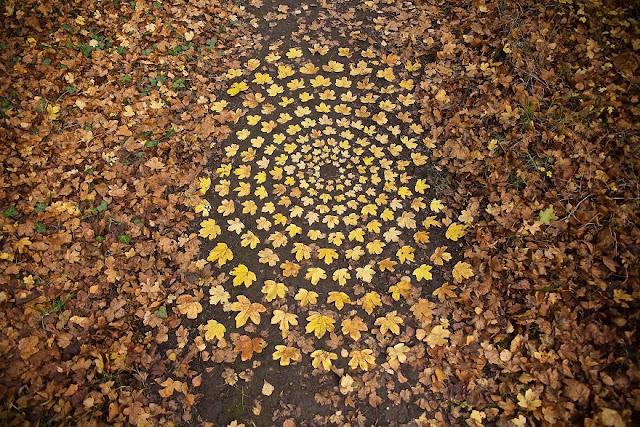 أوراق الخريف