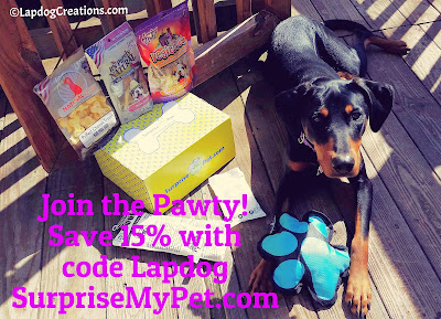 Penny wants you to SAVE 15% with code Lapdog at SurpriseMyPet.com #dogtoys #dogtreats #SurpriseMyPet #petbox #LapdogCreations ©LapdogCreations