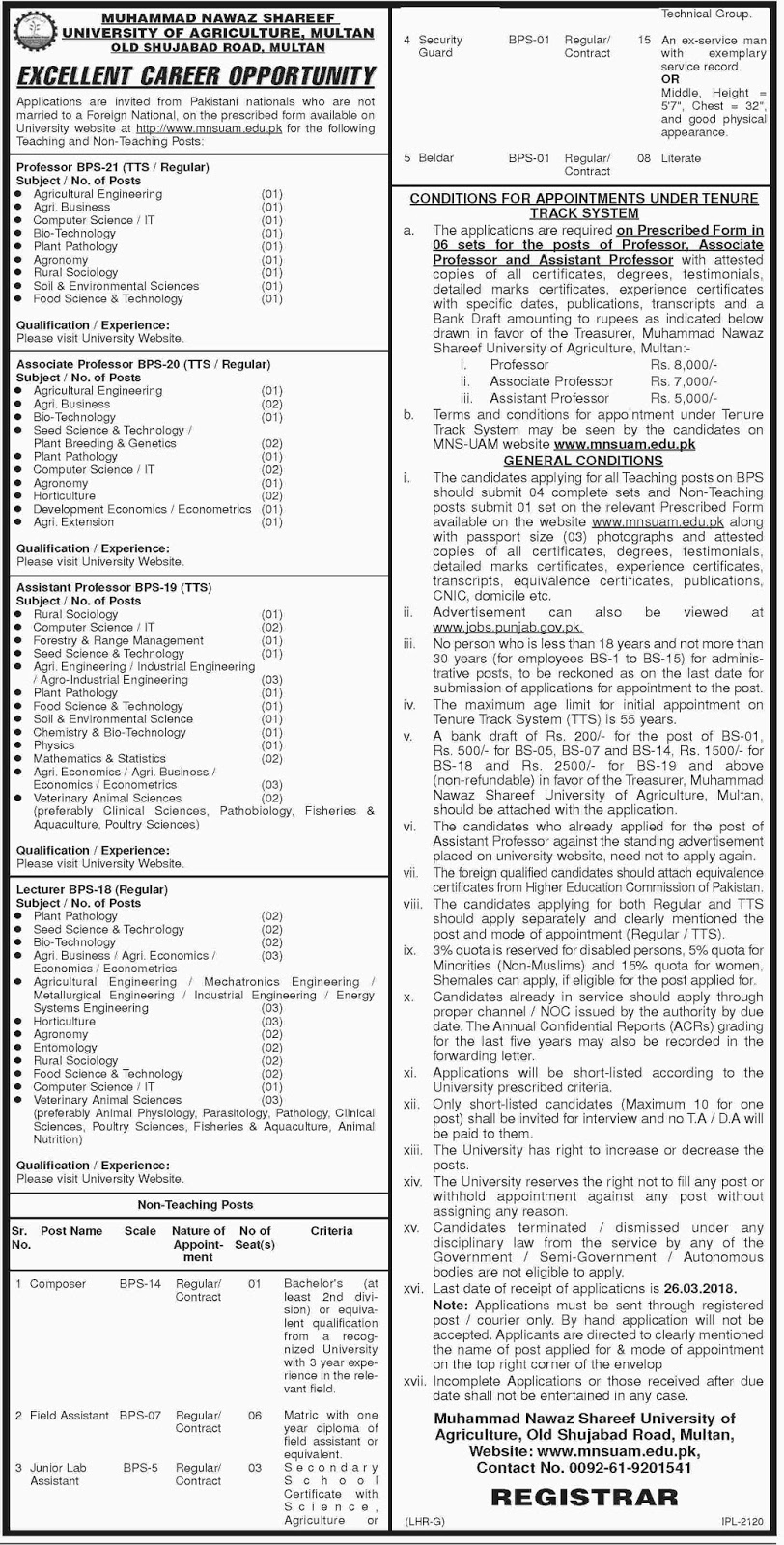 Jobs In Muhammad Nawaz Sharif University Of Agriculture Feb 2018