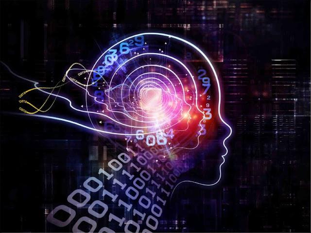 بحث علمي يكشف كيفيّة عمل الدماغ البشري أثناء حل المسائل الرياضيّة