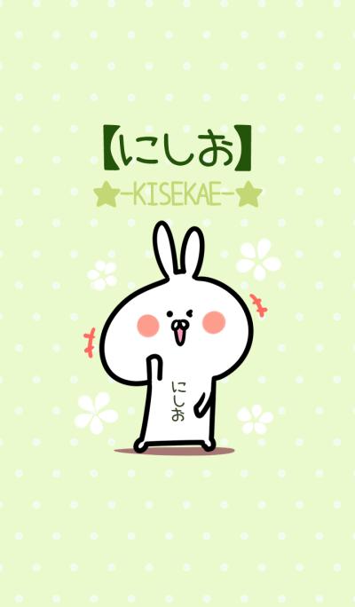 Nishio usagi green Theme