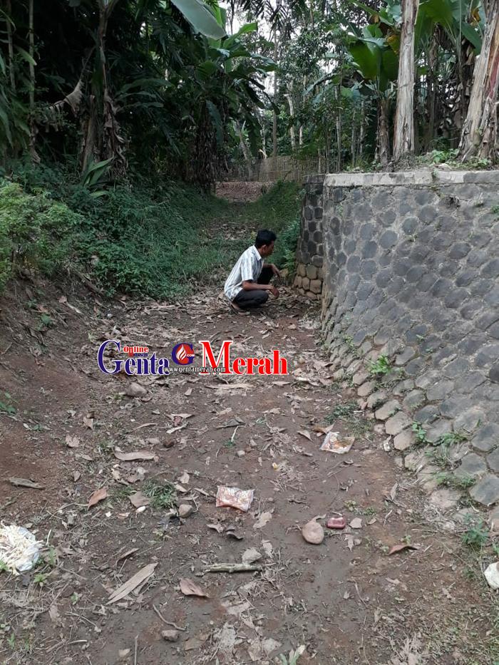 Bendungan Singaparna Rusak, Ribuan Hektar Sawah di Padangratu Gagal Panen
