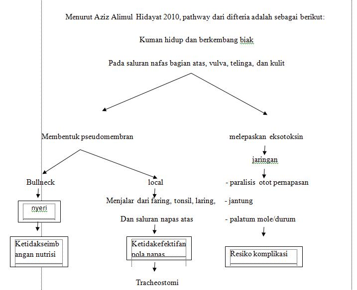 Beda Maag & Asam Lambung ( Gerd )