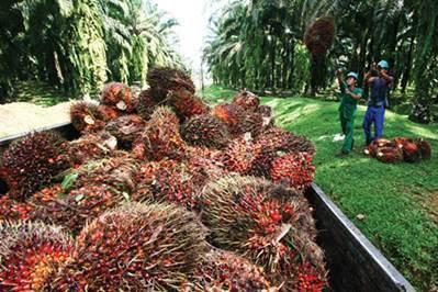 Lowongan PT. Duta Swakarya Indah Pekanbaru Januari 2019