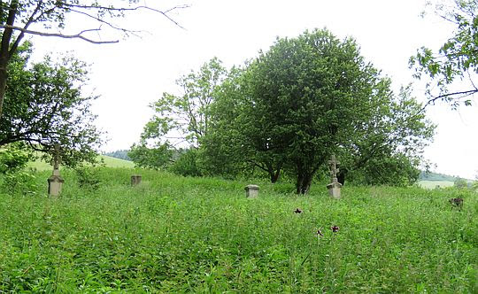 Łemkowski cmentarz w Przybyszowie.