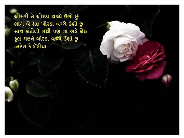 ओसरी ने ओरडा वच्चे उभो छुं Gujarati Muktak By Naresh K.Dodia