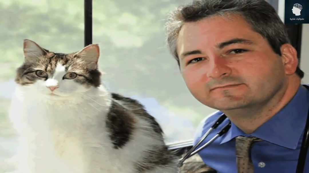 eed4df551 القط اوسكار كابوس قصة القط اوسكار الذي حير العلماء القط اوسكار قصة القط  اوسكار القط اوسكار