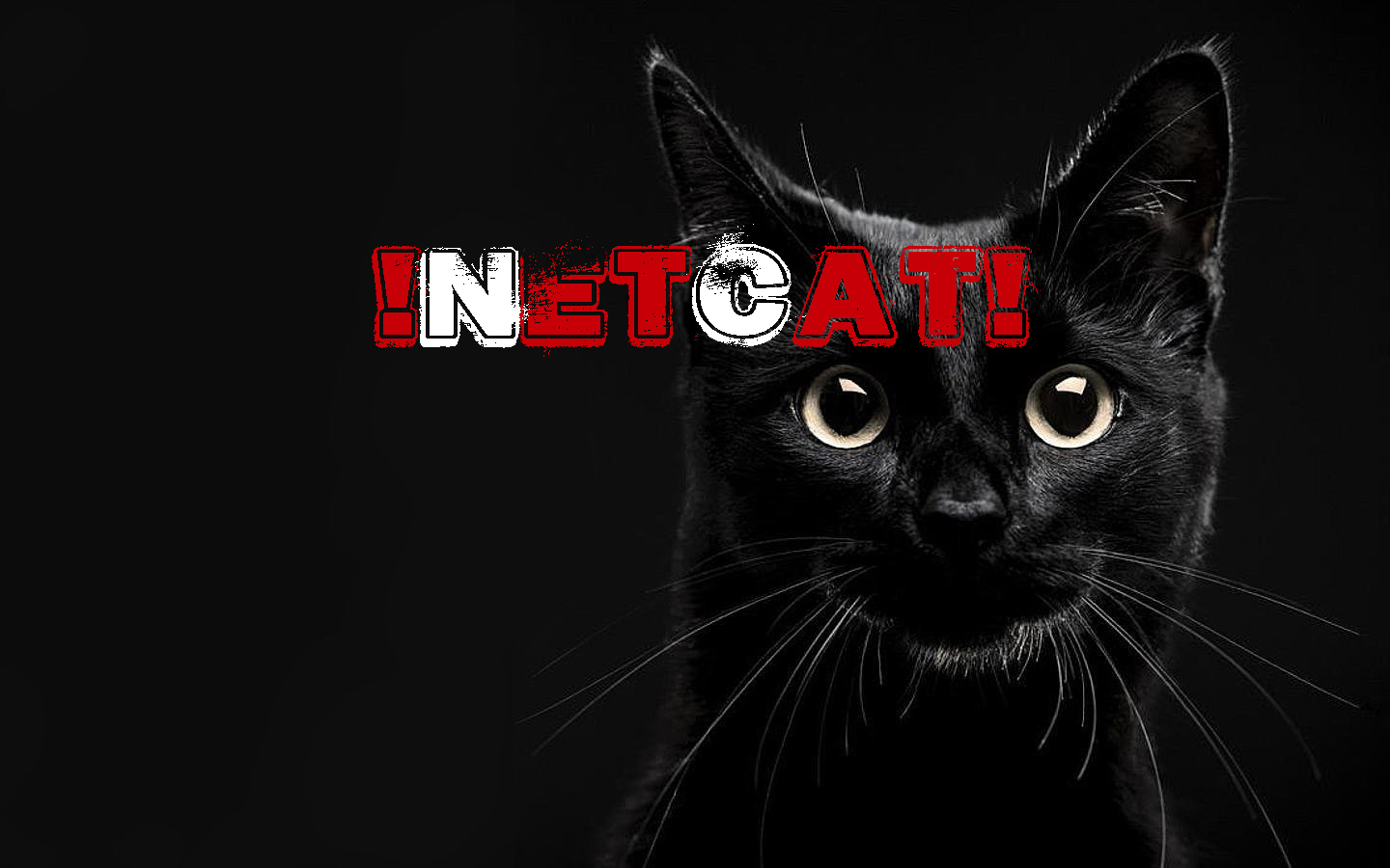 Creating A Reverse Shell With Netcat - Yahya1337