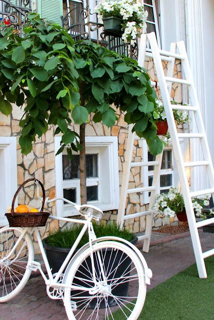 Top 3 Garden Trends for 2018 | City of Creative Dreams