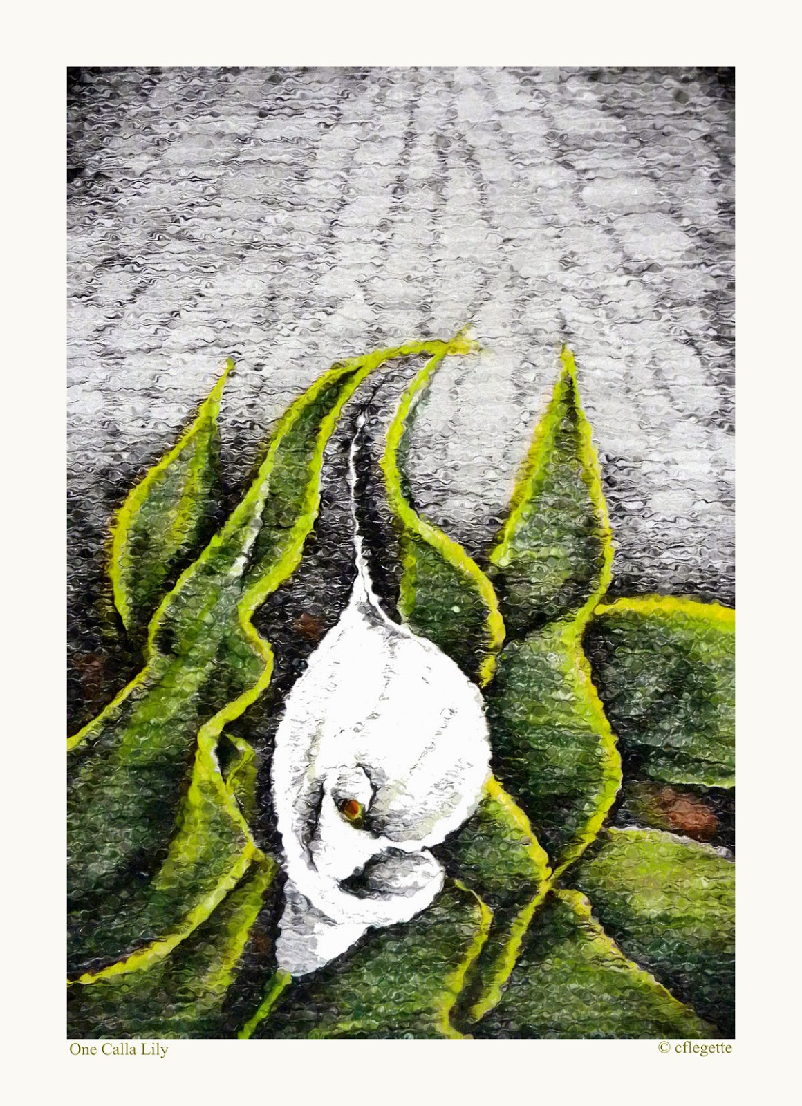 http://fineartamerica.com/featured/one-calla-lily-c-f-legette.html?newartwork=true