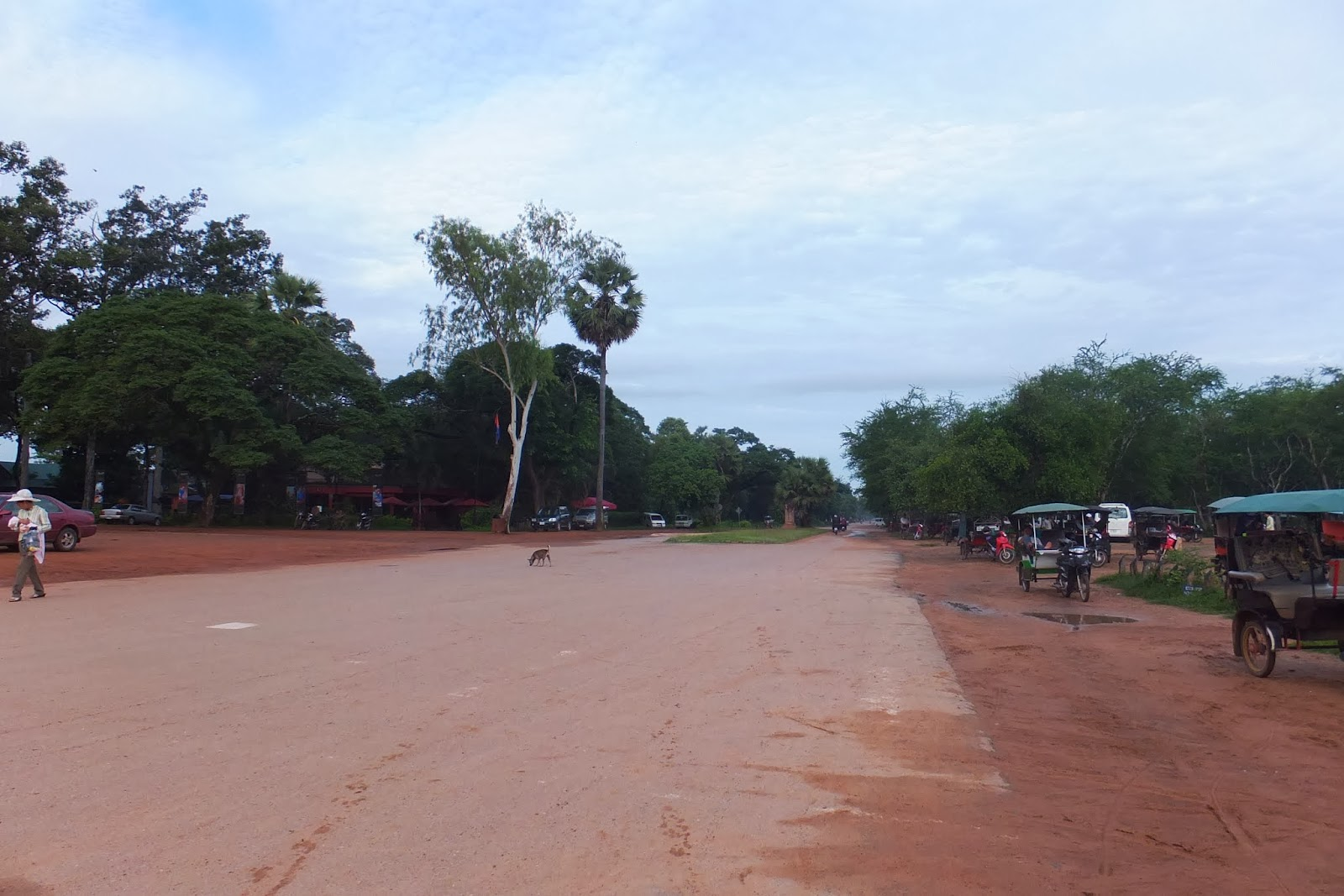cambodia-siemreap-road