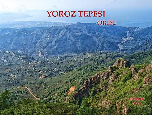 YOROZ TEPESİ, ORDU