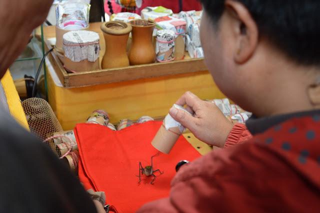 Marché aux insectes à Shanghai