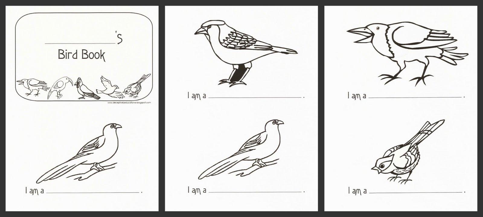 Printable Bird Identification Diagram - DIY Enthusiasts Wiring ...