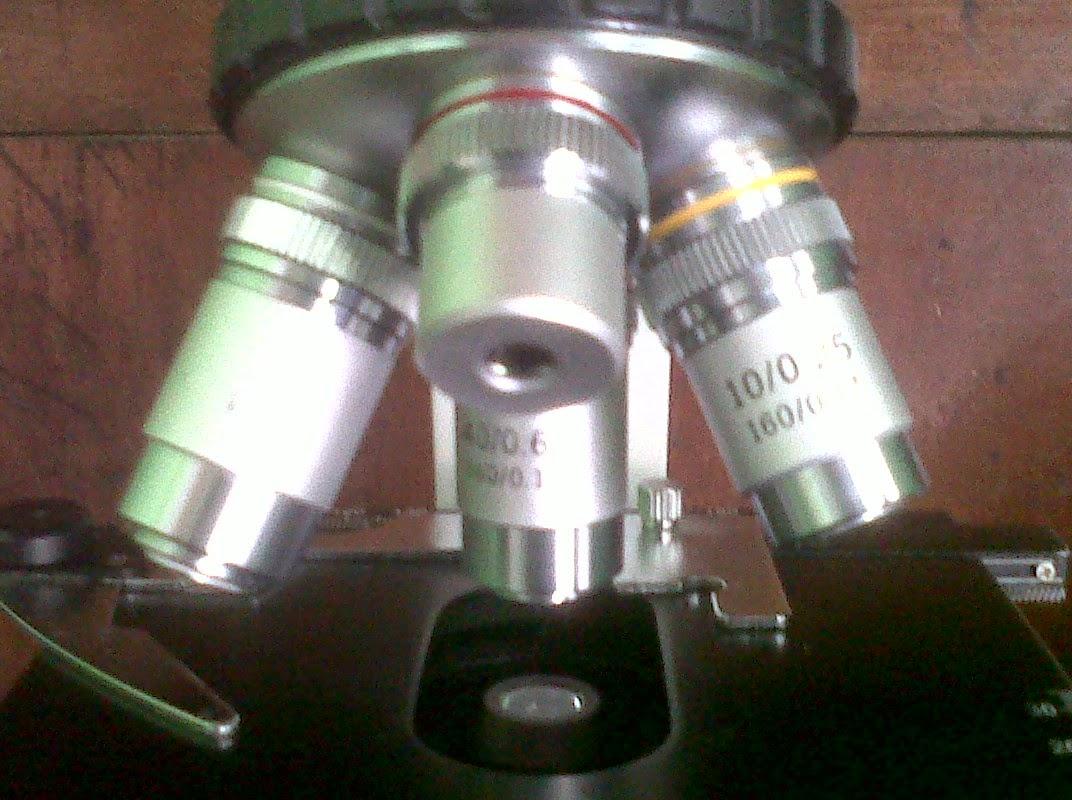 http://www.kakilima99freeland.blogspot.com/2014/06/jasa-terima-servis-mikroscop-monoculer.html