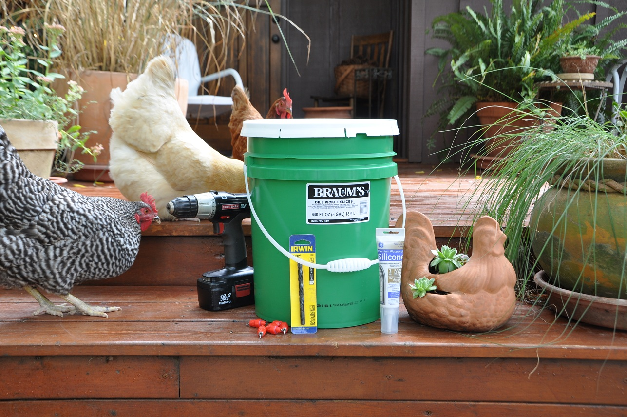 Diy Chicken Waterer Community Chickens