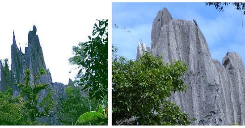 Batu Babua Batu Yang Konon Bisa Berbuah Seperti Pohon Nganatrip