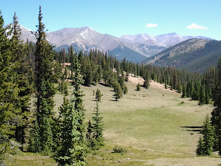 Big open meadow with pine trees along the edge, with snow capped 14ers in the distance.
