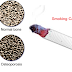 How Does Smoking Develop Osteoporosis? How to Manage this Disorder