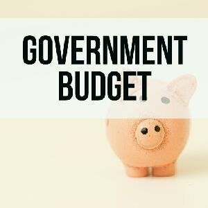 Government budget notes for class xii cbse