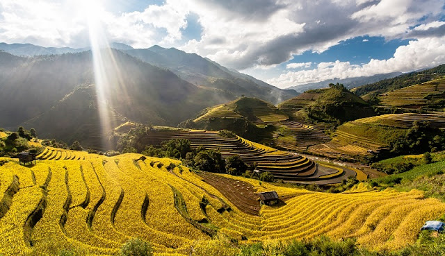 History of Mu Cang Chai terraced fields 1