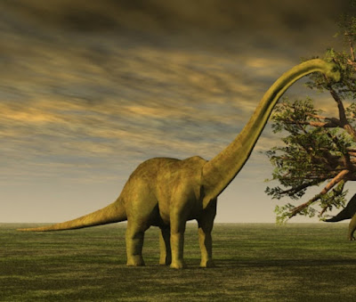 """Holy Grail"" of dinosaurs is nothing special, and the discovery is best explained by the Genesis Flood model"