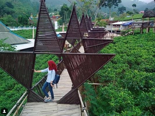kebun teh kemuning wisata karanganyar jawa tengah