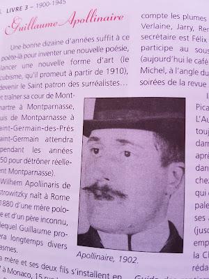 Guillaume Apollinaire en détail