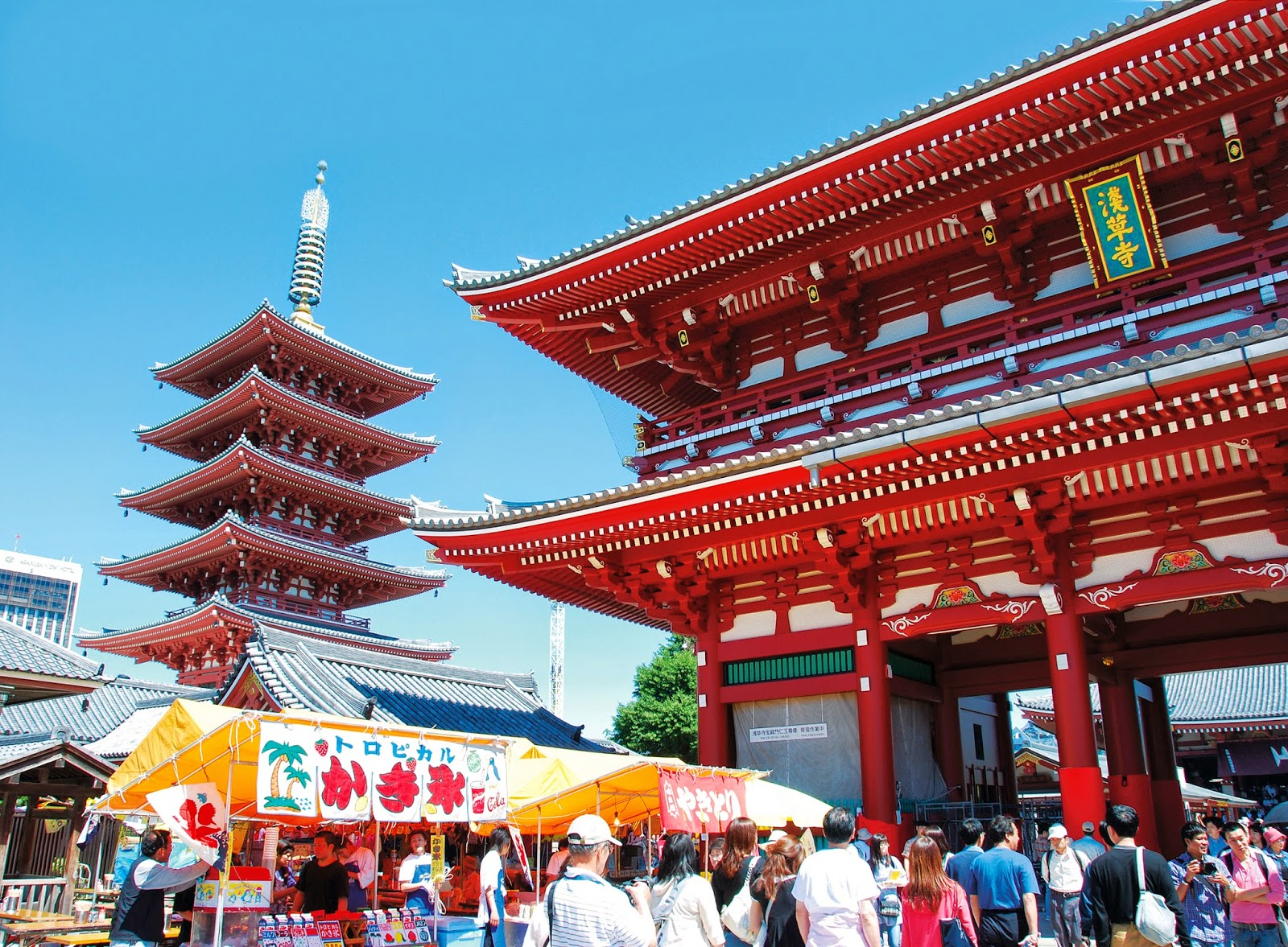 Paket Tour Muslim Jepang 7H5M