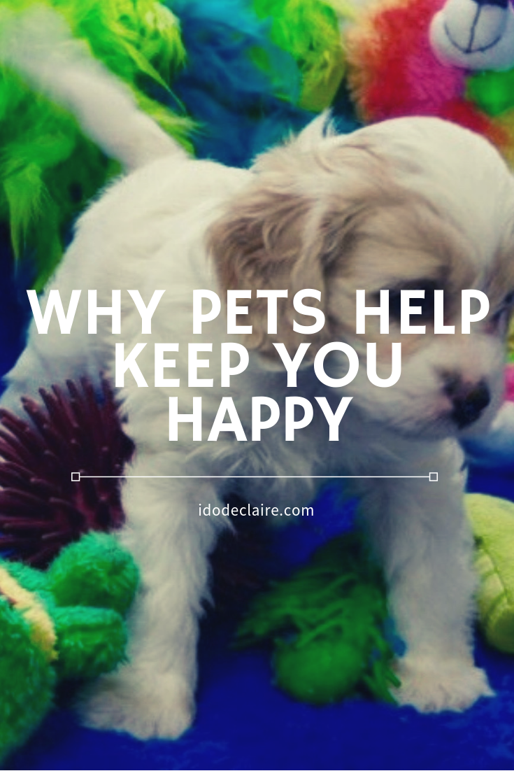 Why Pets Help Keep You Happy
