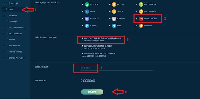 Инвестирование в проекте Biterois com